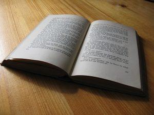 Menulis Novel Best Seller, Langkah langkah menulis novel